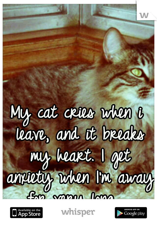 My cat cries when i leave, and it breaks my heart. I get anxiety when I'm away for very long...