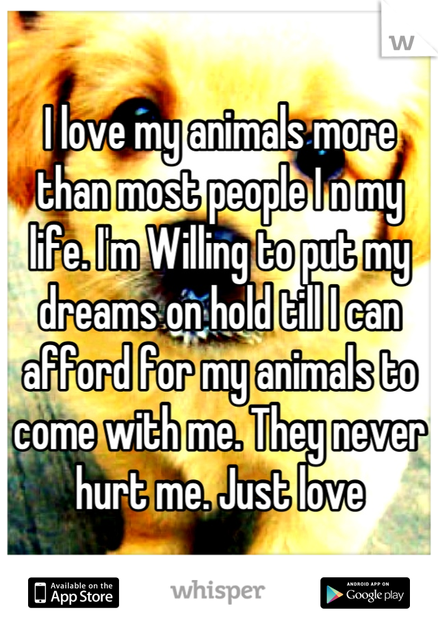 I love my animals more than most people I n my life. I'm Willing to put my dreams on hold till I can afford for my animals to come with me. They never hurt me. Just love