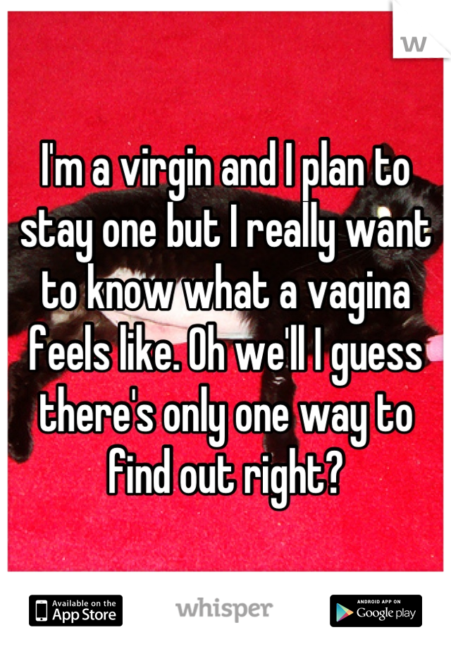 I'm a virgin and I plan to stay one but I really want to know what a vagina feels like. Oh we'll I guess there's only one way to find out right?