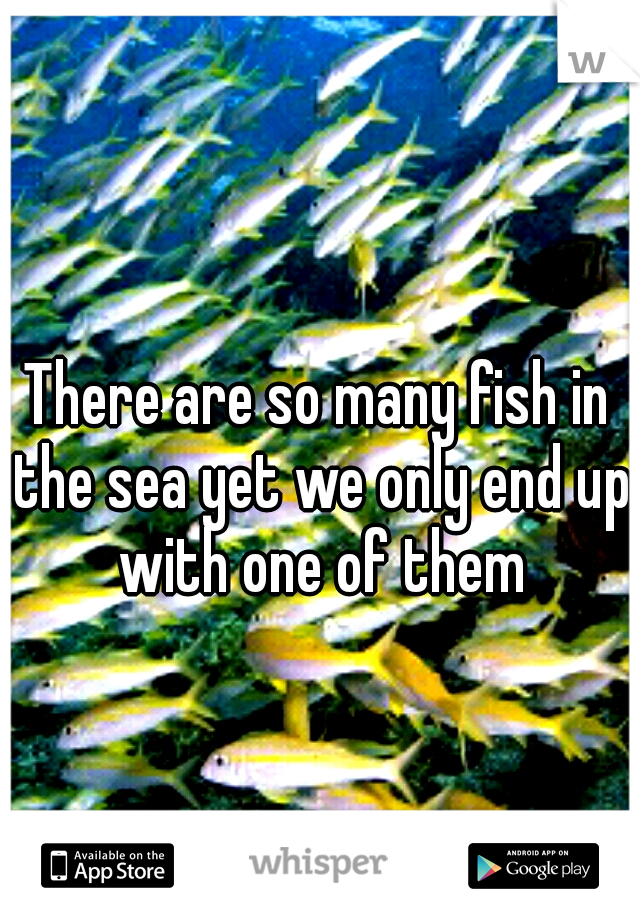 There are so many fish in the sea yet we only end up with one of them