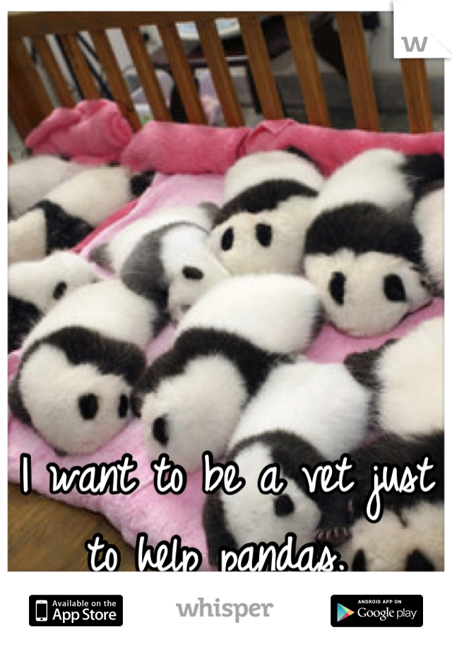 I want to be a vet just to help pandas.