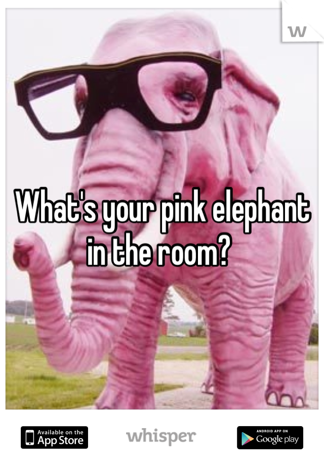 What's your pink elephant in the room?