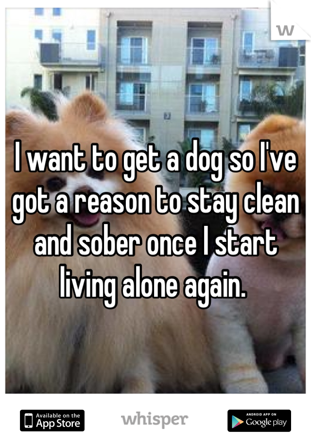 I want to get a dog so I've got a reason to stay clean and sober once I start living alone again.