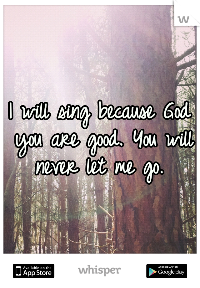 I will sing because God you are good. You will never let me go.