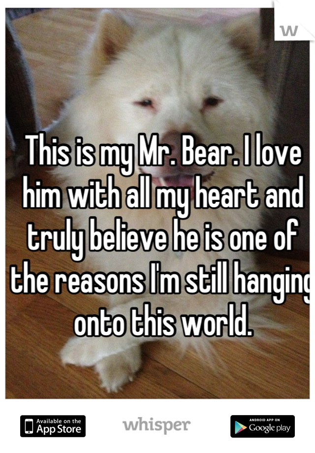 This is my Mr. Bear. I love him with all my heart and truly believe he is one of the reasons I'm still hanging onto this world.