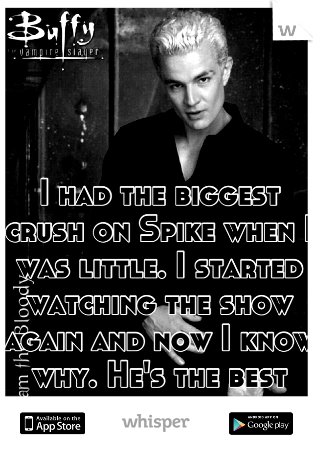I had the biggest crush on Spike when I was little. I started watching the show again and now I know why. He's the best bad boy out there.