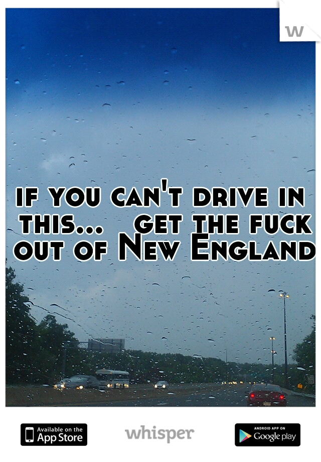 if you can't drive in this...  get the fuck out of New England.