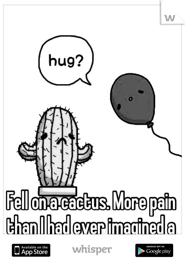 Fell on a cactus. More pain than I had ever imagined a cactus to give. Dang!