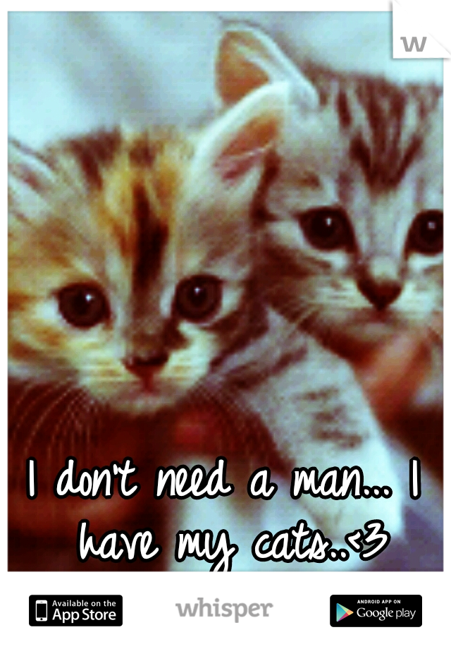 I don't need a man... I have my cats..<3