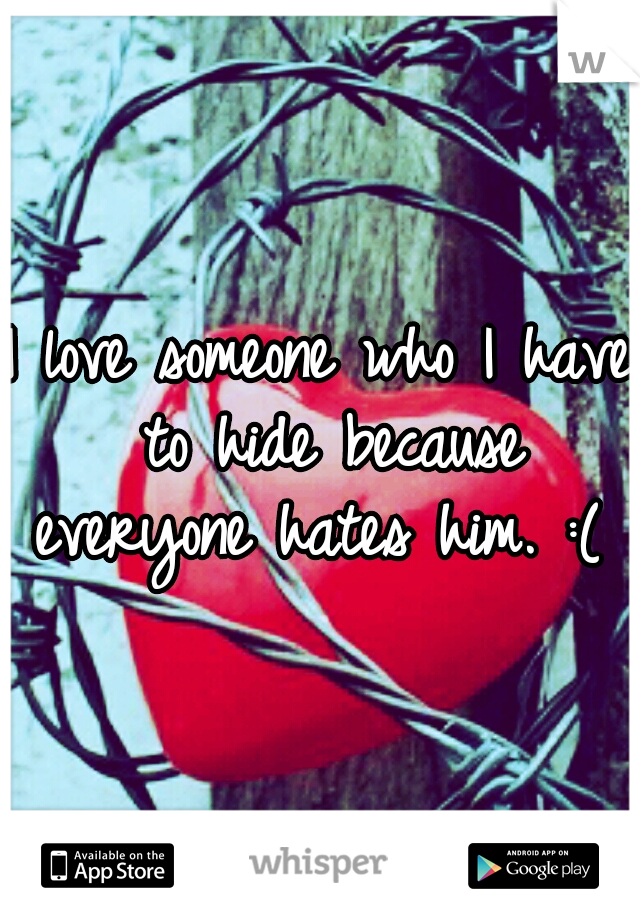 I love someone who I have to hide because everyone hates him. :(
