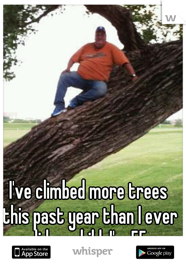I've climbed more trees this past year than I ever did as child. I'm 55.