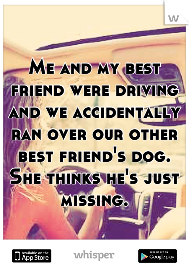 Me and my best friend were driving and we accidentally ran over our other best friend's dog. She thinks he's just missing.