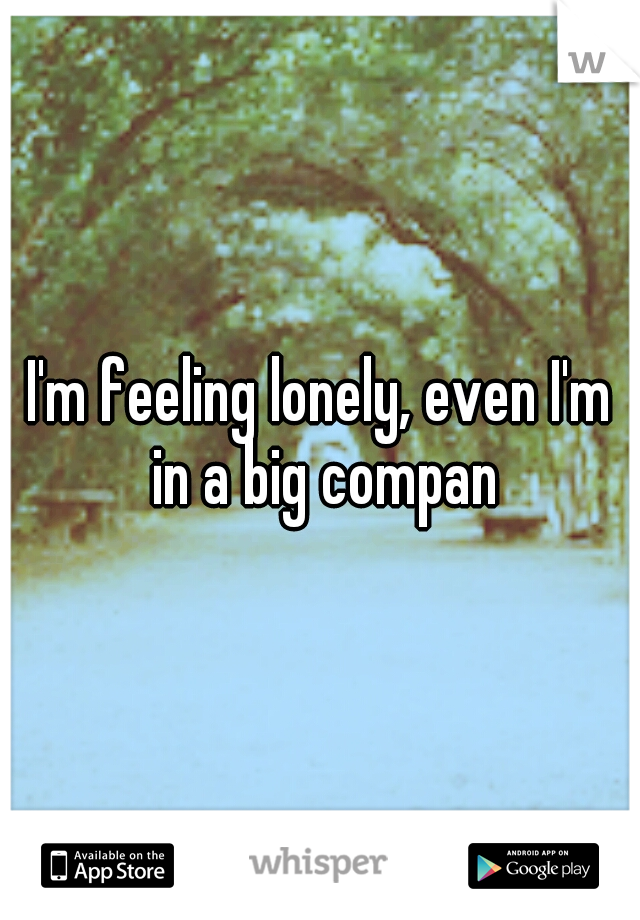 I'm feeling lonely, even I'm in a big compan