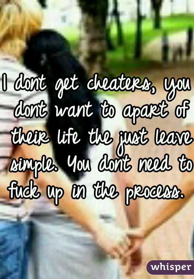 I dont get cheaters, you dont want to apart of their life the just leave simple. You dont need to fuck up in the process.
