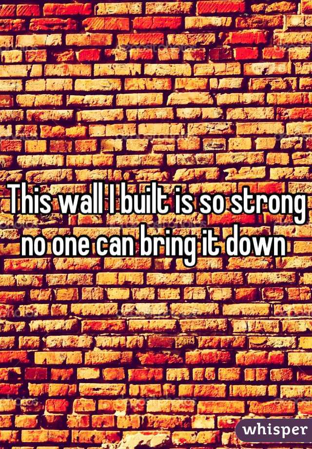 This wall I built is so strong no one can bring it down