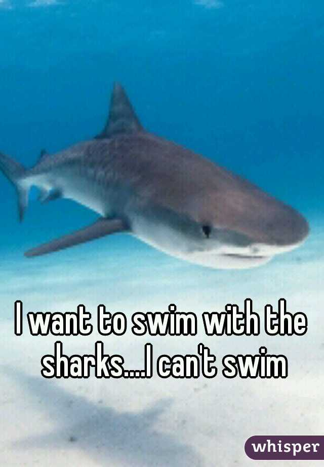 I want to swim with the sharks....I can't swim