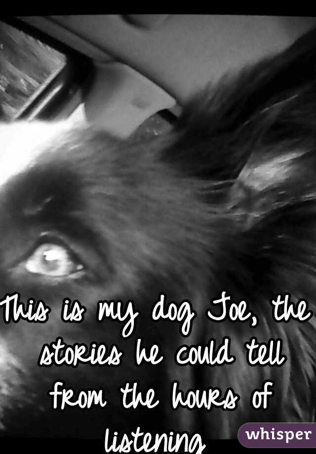 This is my dog Joe, the stories he could tell from the hours of listening