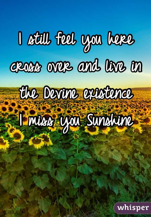I still feel you here cross over and live in the Devine existence I miss you Sunshine