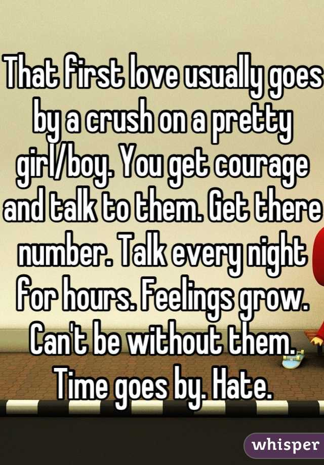 That first love usually goes by a crush on a pretty girl/boy. You get courage and talk to them. Get there number. Talk every night for hours. Feelings grow. Can't be without them. Time goes by. Hate.