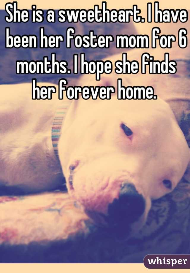 She is a sweetheart. I have been her foster mom for 6 months. I hope she finds her forever home.