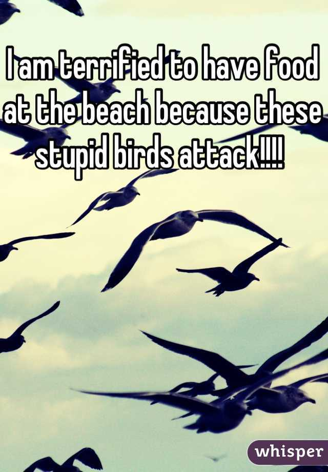 I am terrified to have food at the beach because these stupid birds attack!!!!