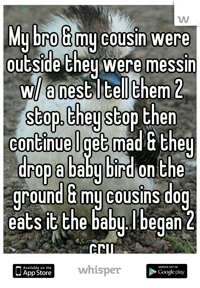 My bro & my cousin were outside they were messin w/ a nest I tell them 2 stop. they stop then continue I get mad & they drop a baby bird on the ground & my cousins dog eats it the baby. I began 2 cry
