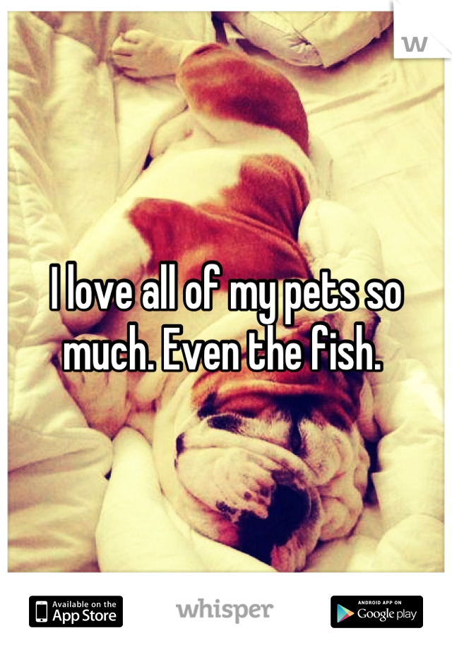 I love all of my pets so much. Even the fish.