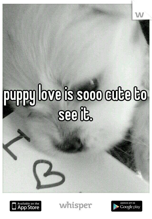 puppy love is sooo cute to see it.