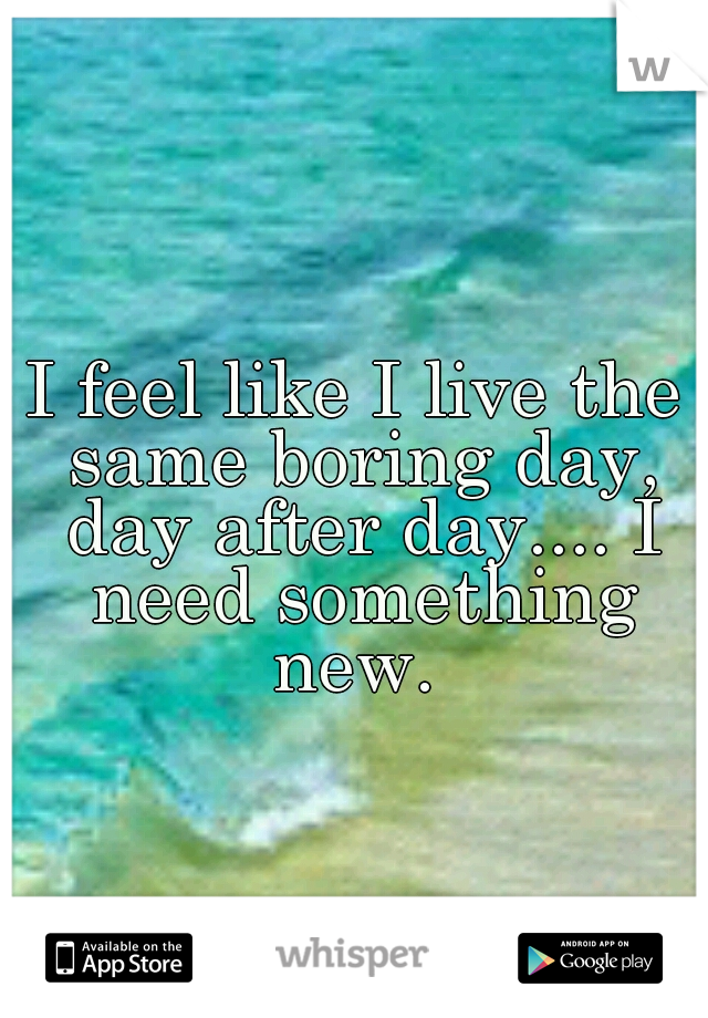 I feel like I live the same boring day, day after day.... I need something new.