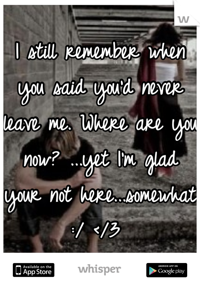 I still remember when you said you'd never leave me. Where are you now? ...yet I'm glad your not here...somewhat :/ </3