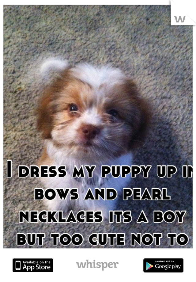 I dress my puppy up in bows and pearl necklaces its a boy but too cute not to be a girl!!! =)