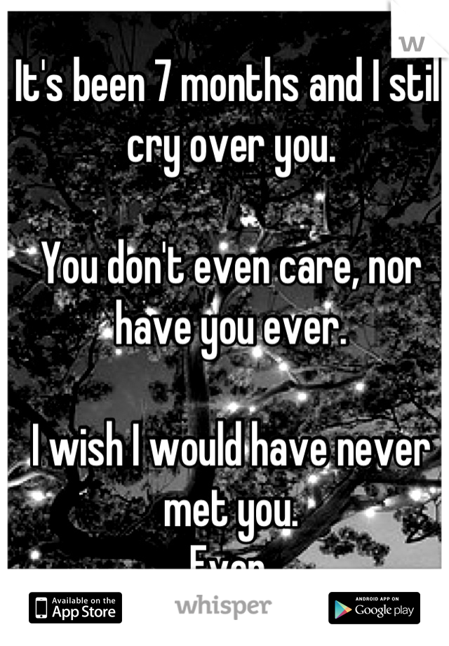 It's been 7 months and I still cry over you.   You don't even care, nor have you ever.  I wish I would have never met you.  Ever.