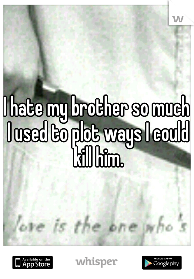 I hate my brother so much I used to plot ways I could kill him.