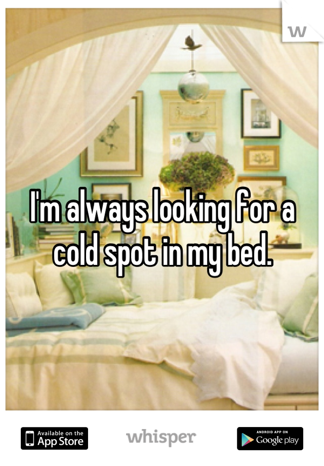 I'm always looking for a cold spot in my bed.
