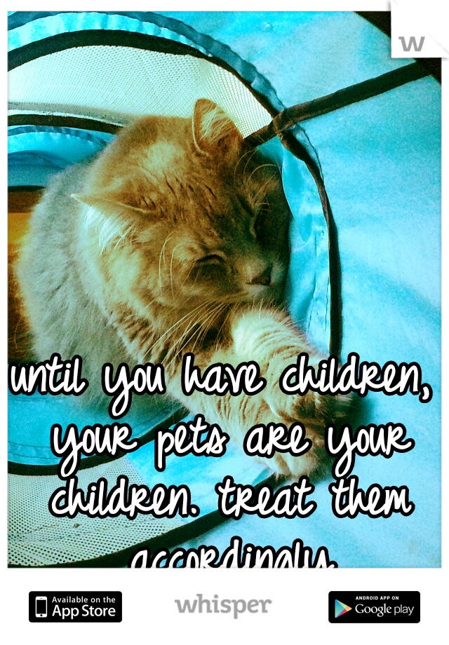 until you have children, your pets are your children. treat them accordingly
