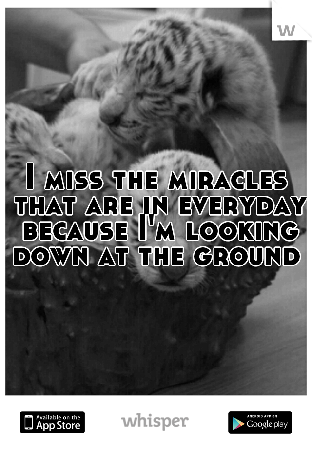 I miss the miracles that are in everyday because I'm looking down at the ground