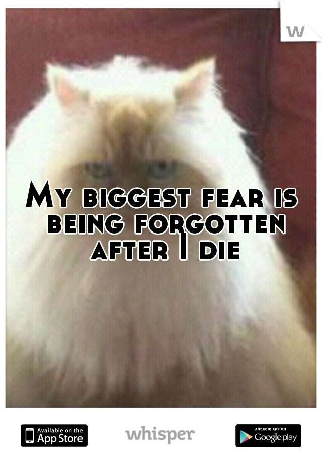 My biggest fear is being forgotten after I die