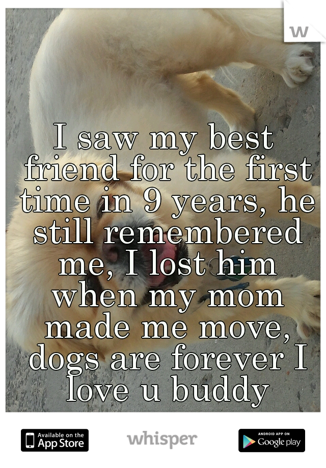 I saw my best friend for the first time in 9 years, he still remembered me, I lost him when my mom made me move, dogs are forever I love u buddy