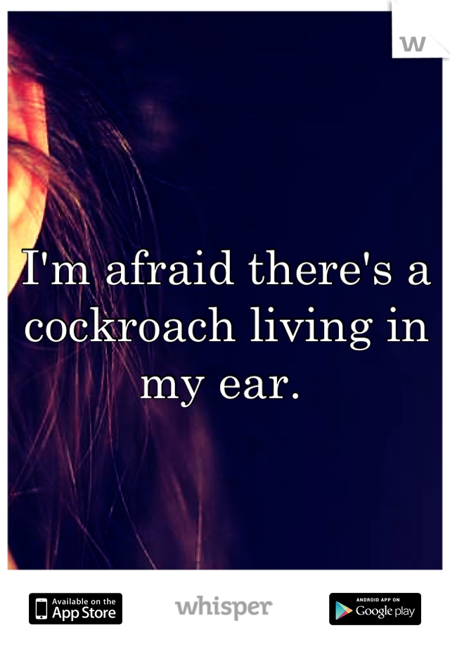 I'm afraid there's a cockroach living in my ear.