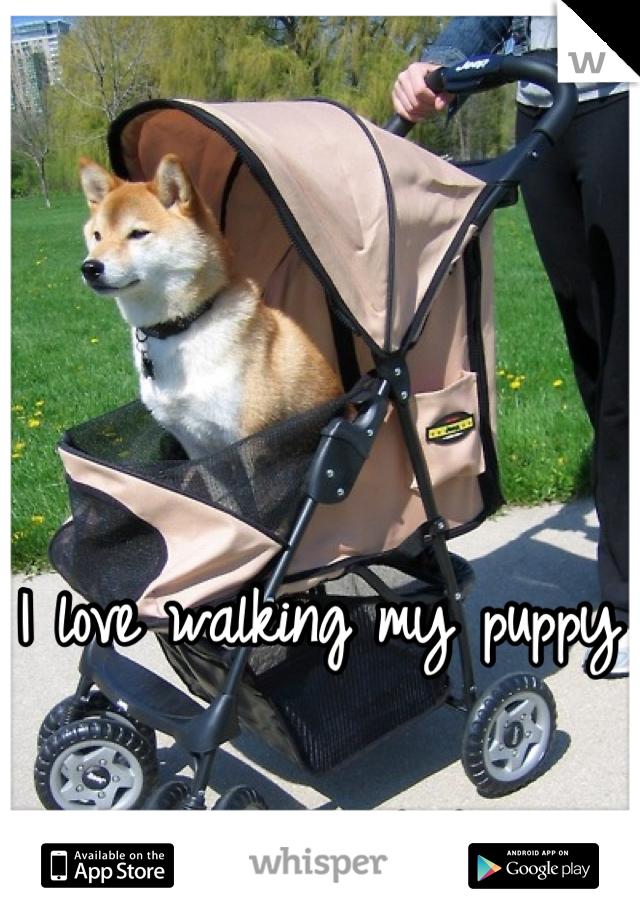 I love walking my puppy  :) he's my baby
