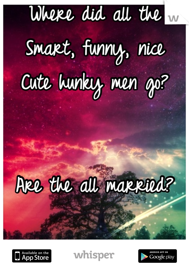 Where did all the  Smart, funny, nice Cute hunky men go?   Are the all married?  ( Just Venting)