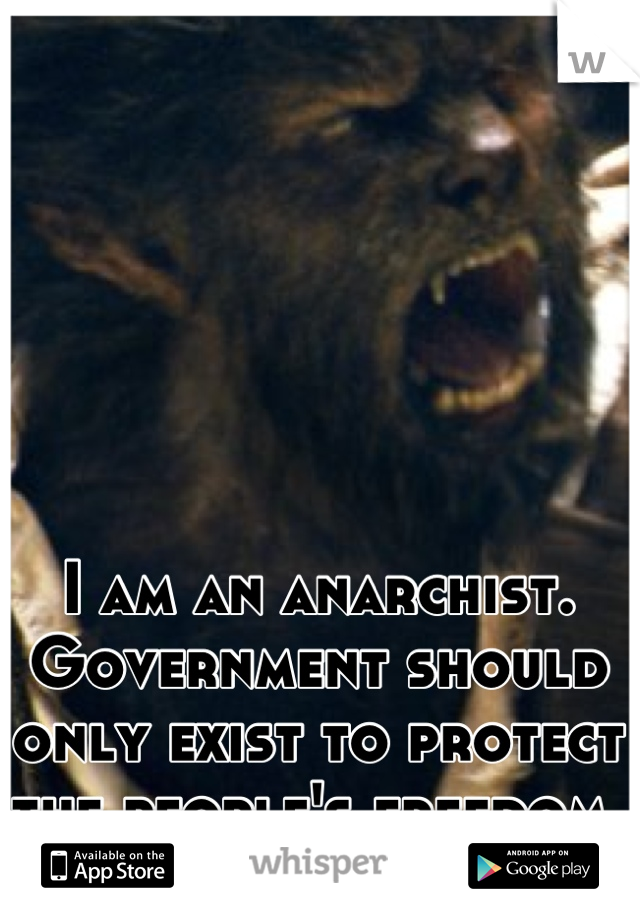 I am an anarchist.  Government should only exist to protect the people's freedom.