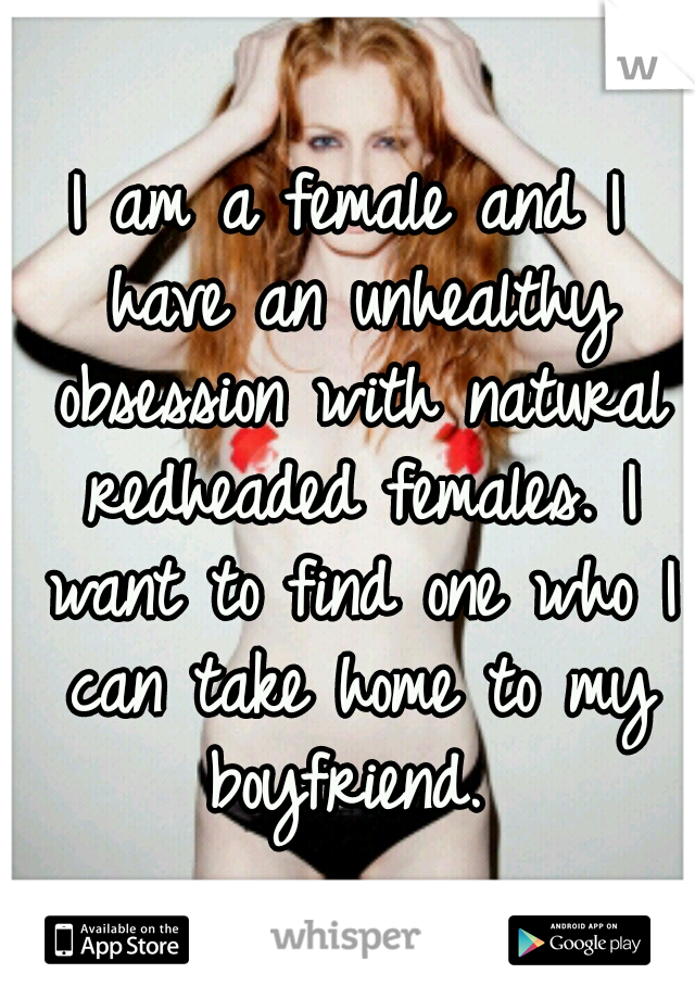I am a female and I have an unhealthy obsession with natural redheaded females. I want to find one who I can take home to my boyfriend.
