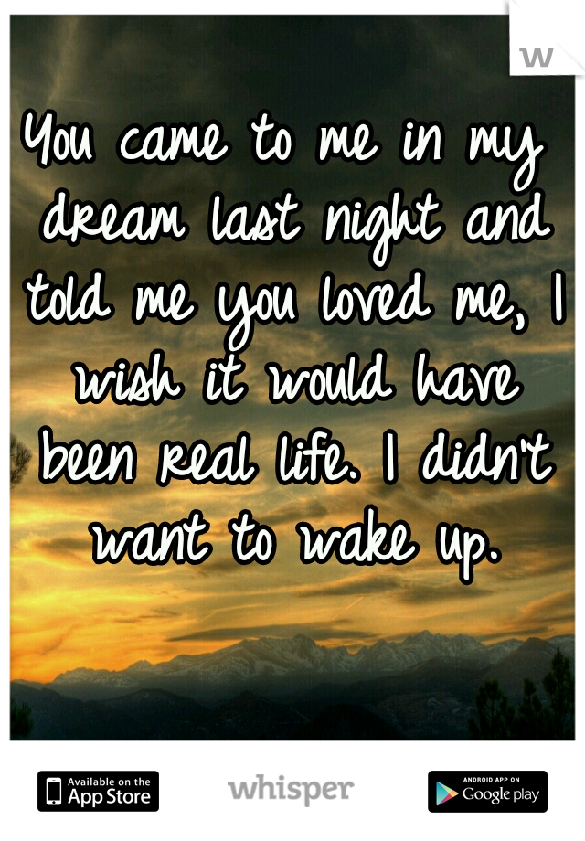 You came to me in my dream last night and told me you loved me, I wish it would have been real life. I didn't want to wake up.