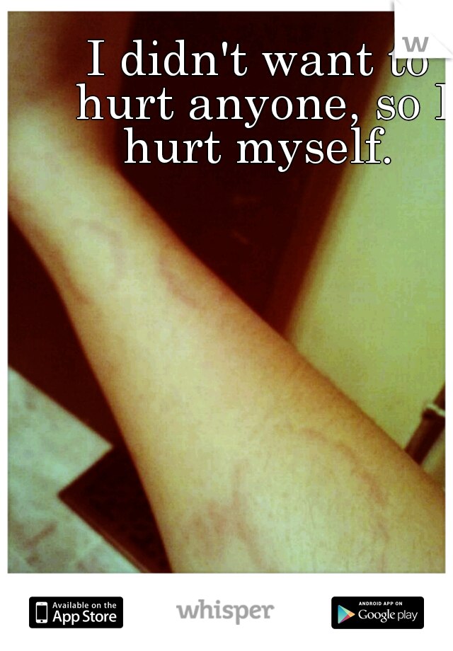 I didn't want to hurt anyone, so I hurt myself.