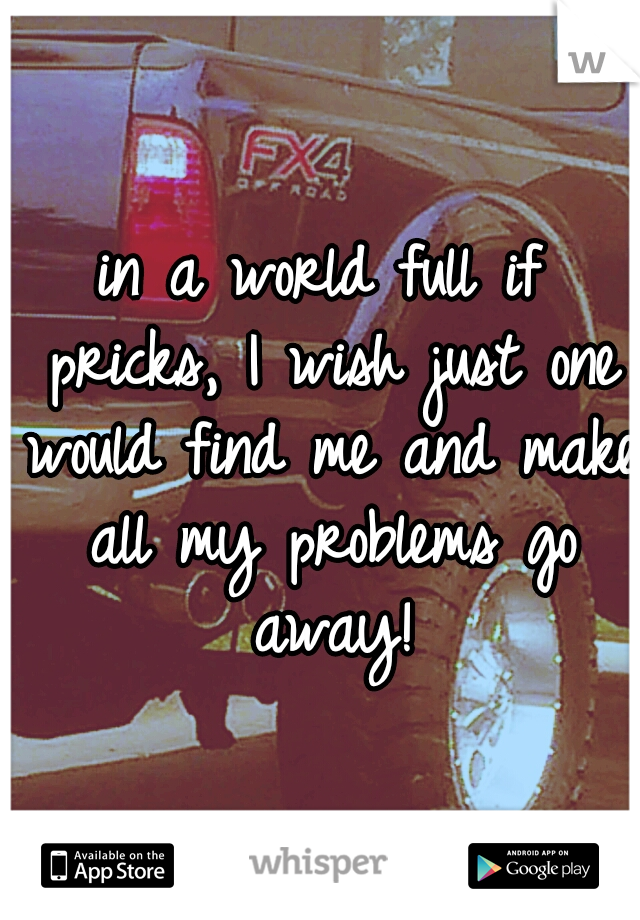 in a world full if pricks, I wish just one would find me and make all my problems go away!