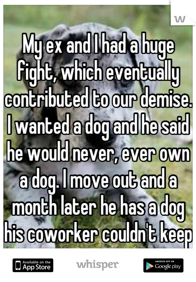My ex and I had a huge fight, which eventually contributed to our demise. I wanted a dog and he said he would never, ever own a dog. I move out and a month later he has a dog his coworker couldn't keep