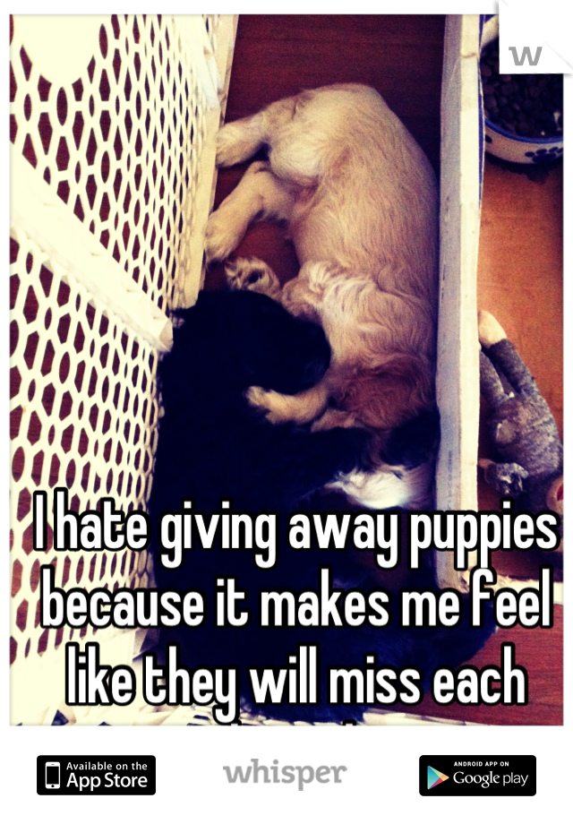 I hate giving away puppies because it makes me feel like they will miss each other a lot.
