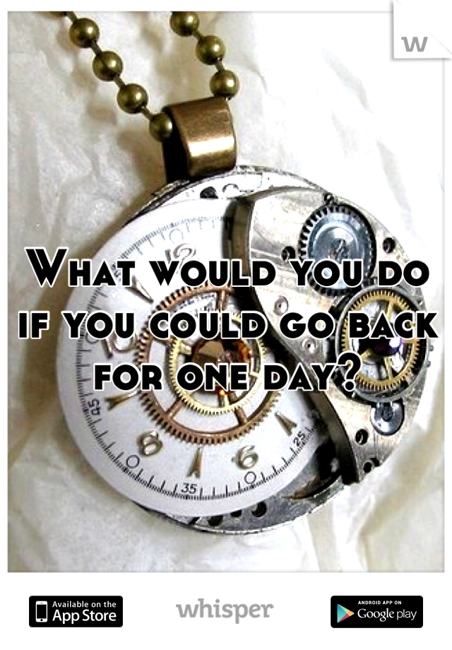 What would you do if you could go back for one day?