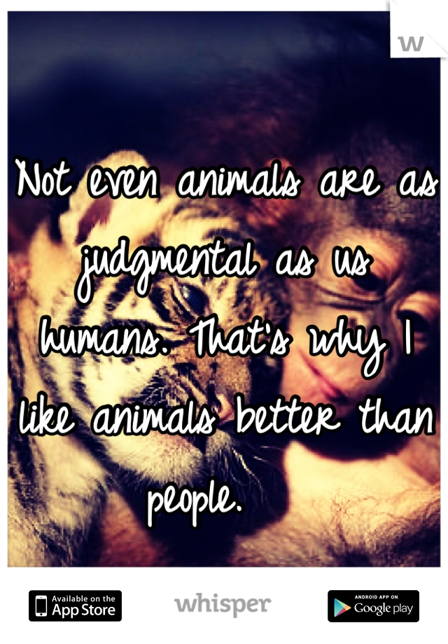 Not even animals are as judgmental as us humans. That's why I like animals better than people.